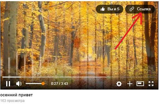 Как скачать видео из одноклассников без программ и сервисов